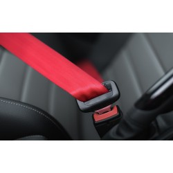 COLORED SAFETY BELTS